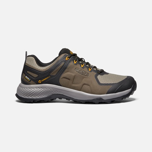 Chaussures Keen explore wp homme